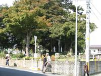 Yonezawa0702