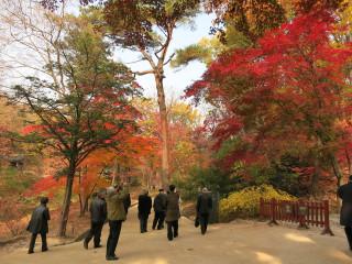 Seoul141101