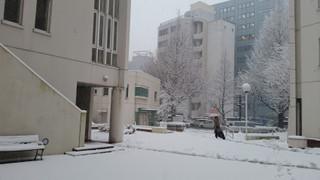 Sendai1502