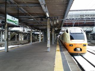 Akita1702