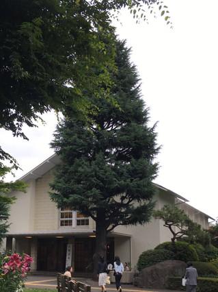 Kichijyojiconf1804