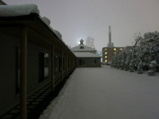 Snow1402