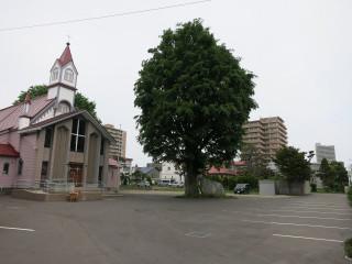 Sapporo1501